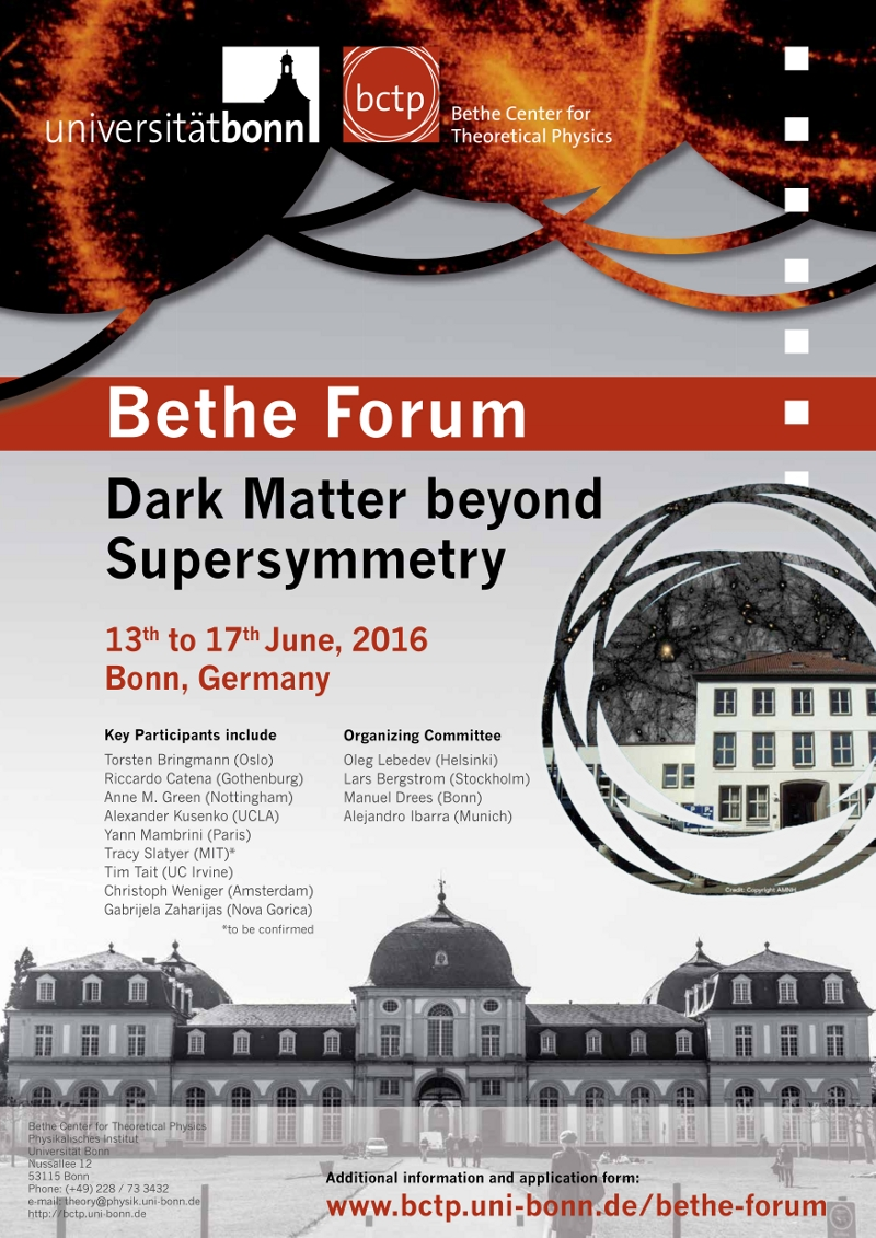 Dark matter beyond Supersymmetry Poster